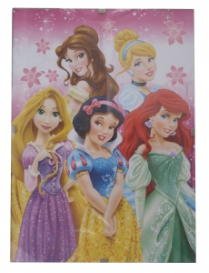 Disney foto Princess 13 x 18 cm
