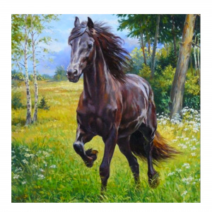 Toi-Toys diamond painting Paard junior 30 cm canvas zwart