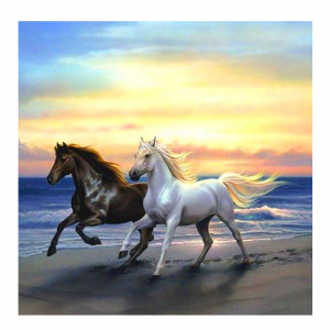 Toi-Toys diamond painting Paarden junior 30 cm canvas wit/zwart