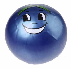 Toyrific ball Fruitfacejunior 25 cm blue