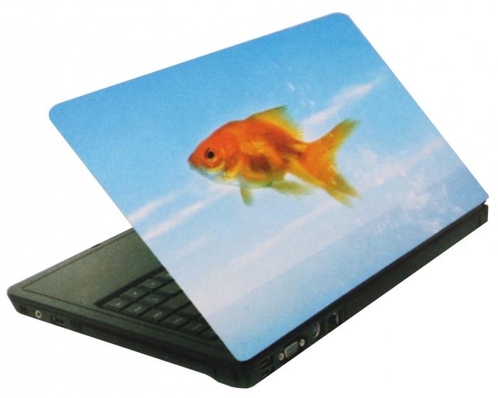 Amigo laptop sticker goudvis blauw/oranje