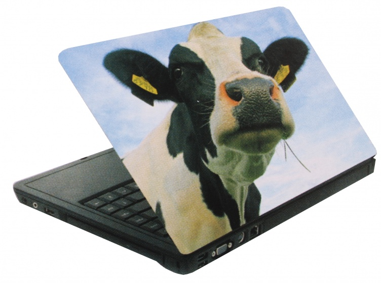 Amigo laptop sticker koe zwart/wit