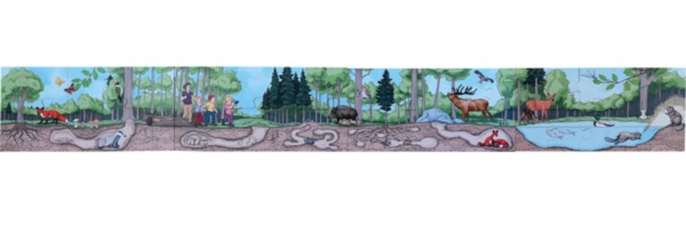 beleduc vloerpuzzel ontdek het bos 40 stukjes kopen