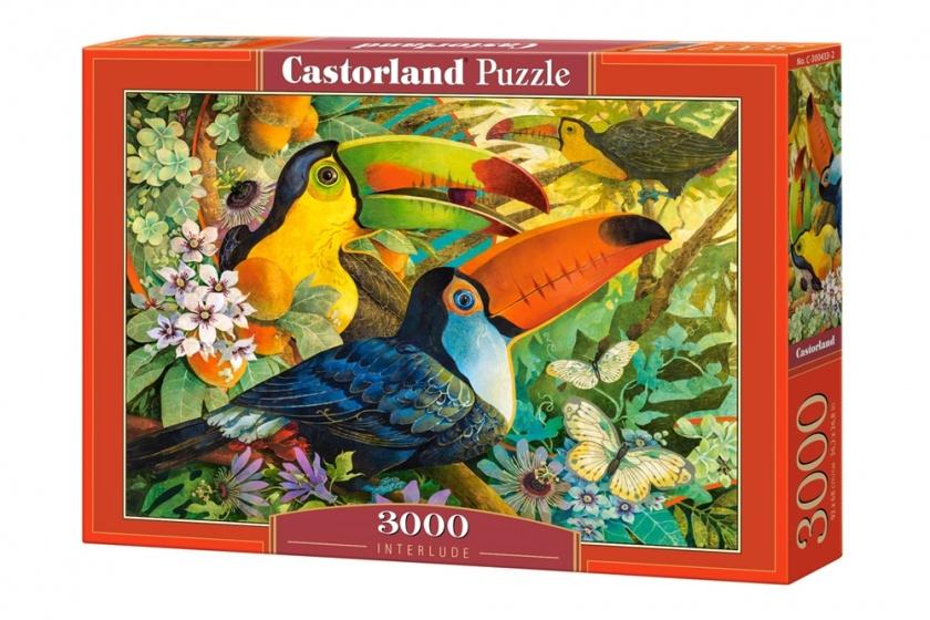 Castorland legpuzzel Interlude 3000 stukjes