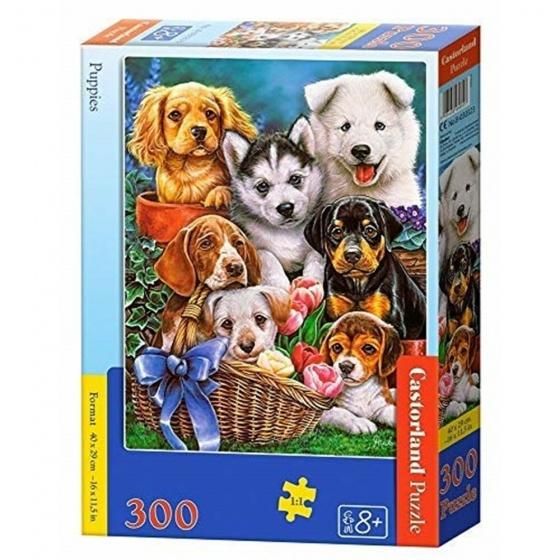 Castorland legpuzzel Puppies 300 stukjes