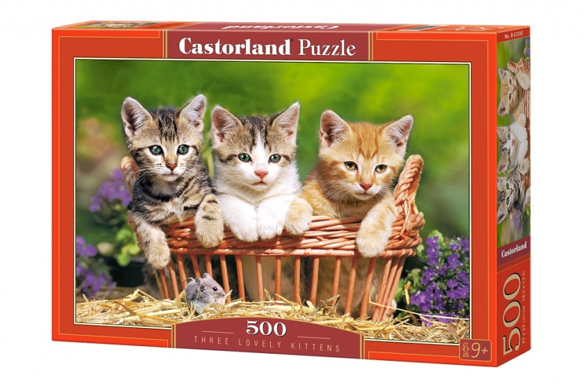 Castorland legpuzzel Three lovely kittens 500 stukjes