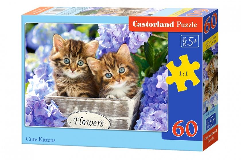 Castorland legpuzzels Cute kittens 60 stukjes