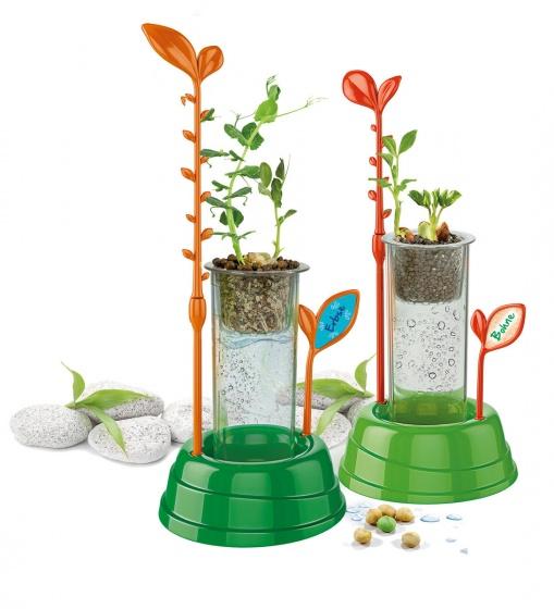 Wetenschap Planten Serre