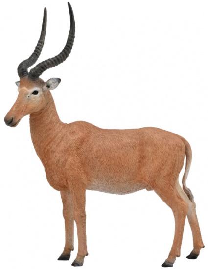 Collecta antilope wilde dieren Hirola 9,2 x 11,5 cm