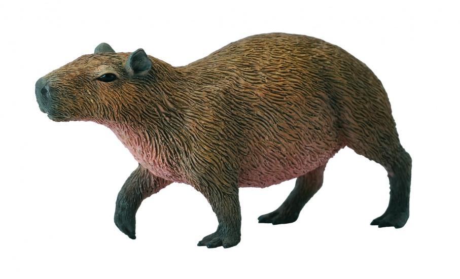 Collecta Bosdieren: Waterzwijn 7,5 X 3,7 cm