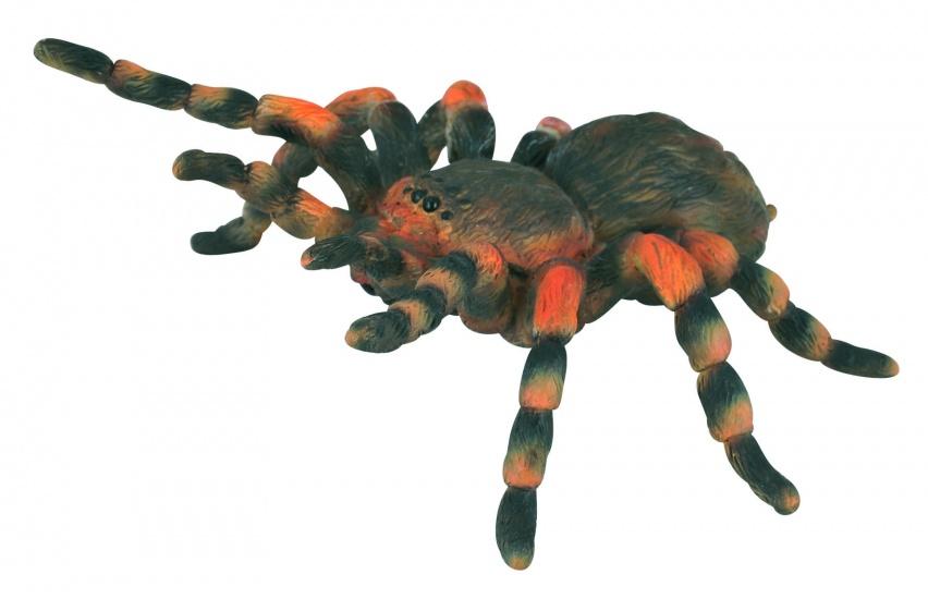Collecta Insecten: Mexicaanse Roodknievogelspin 8 X 8,7 cm