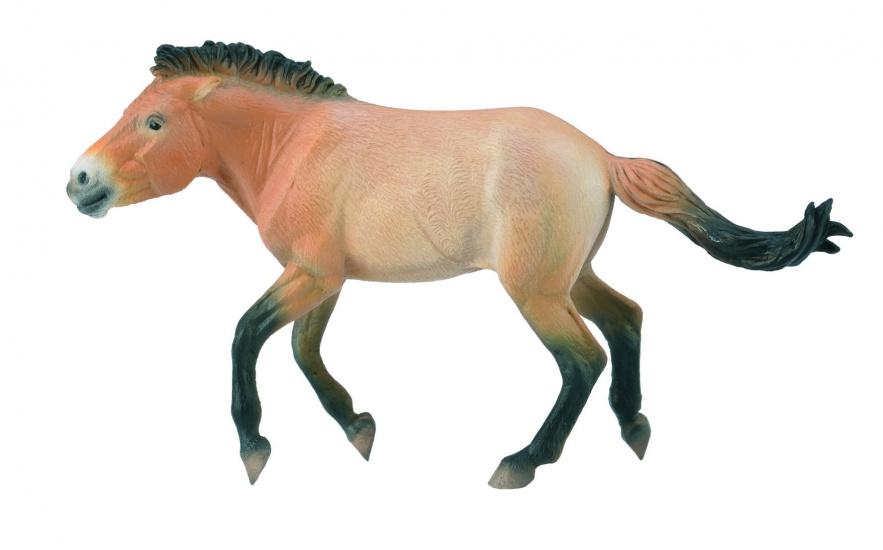 Collecta Paarden Przewalski Hengst 16,5 X 9 cm