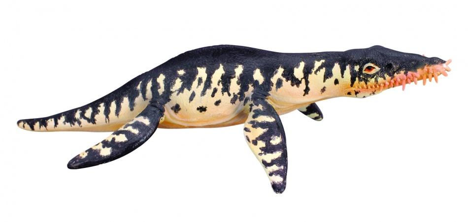 Collecta Prehistorie: Liopleurodon