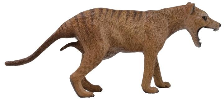 Collecta Tasmaanse buidelwolf 11,6 x 4,8 cm bruin
