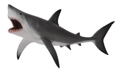 Collecta Zeedieren Witte Haai