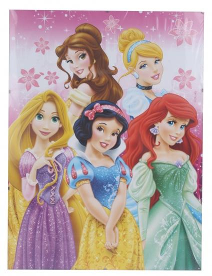 Disney Schilderij Princess roze 30 x 40 cm