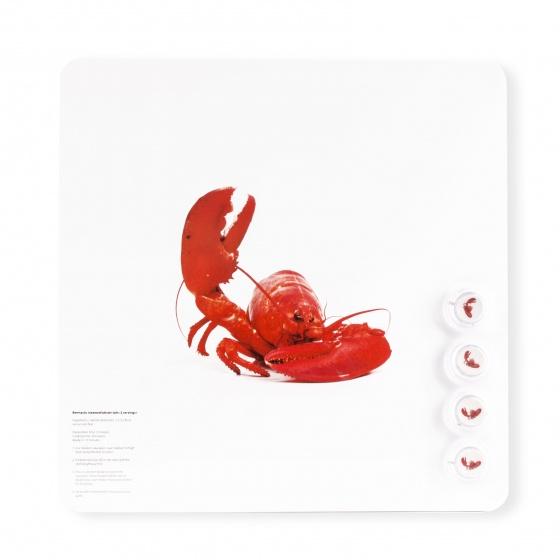Dresz magneetbord kreeft aluminium 29 x 29 cm wit/rood