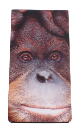 Dresz magnetische boekenlegger Monkey 9 x 4,5 cm