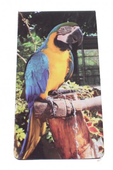 Dresz magnetische boekenlegger Parrot 9 x 4,5 cm