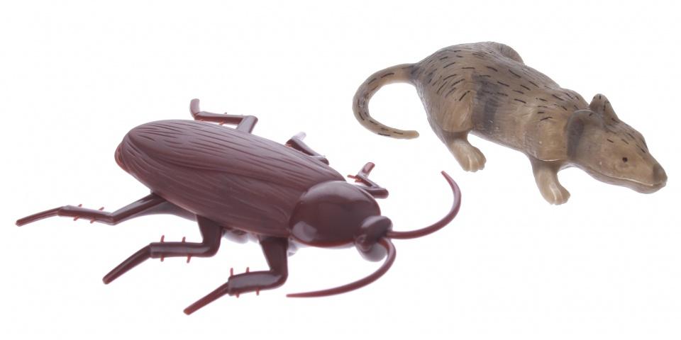Eddy Toys raamkruipers dieren 2 stuks 9 cm bruin