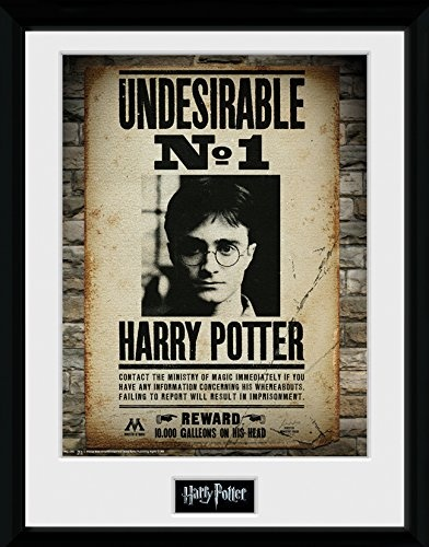 Harry Potter Undesirable No 1 30x40 Collector Prints