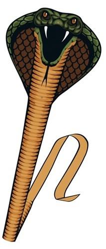 Günther eenlijnsvlieger Cobra 69 x 400 cm bruin/groen