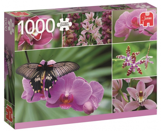 Jumbo PC Holland Orchids legpuzzel 1000 stukjes