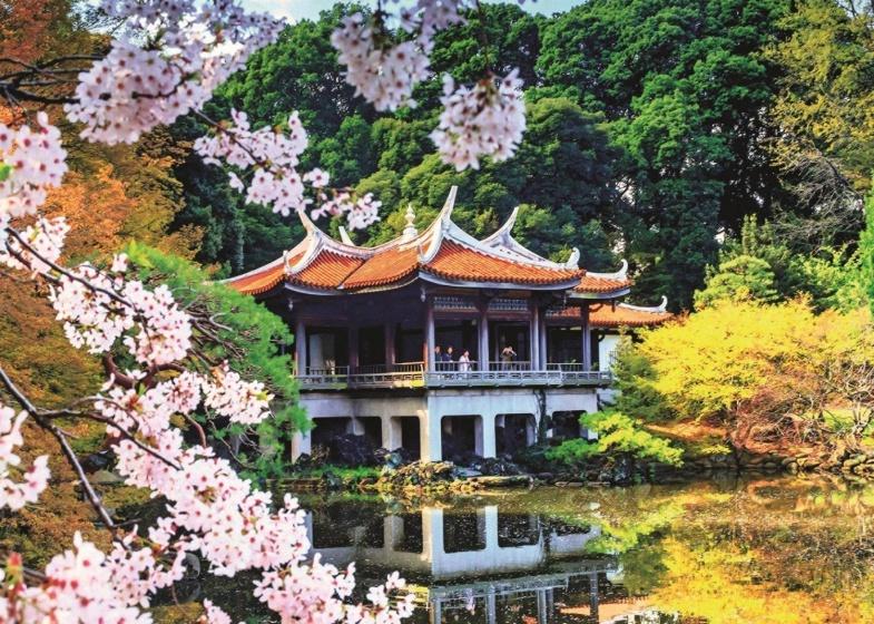 Jumbo Puzzel Japanse bloesem 1000 stukjes