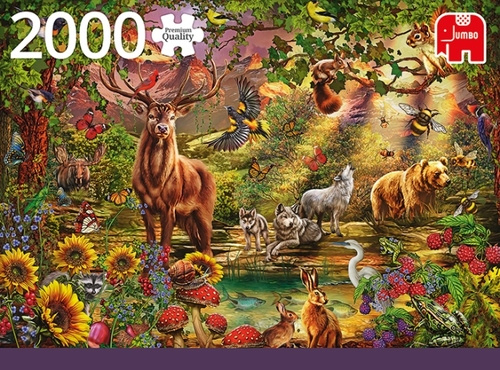 Jumbo puzzel magic forest at sunset 2000 stukjes