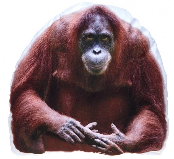 Kamparo kussen orang oetang wit/bruin 62 cm