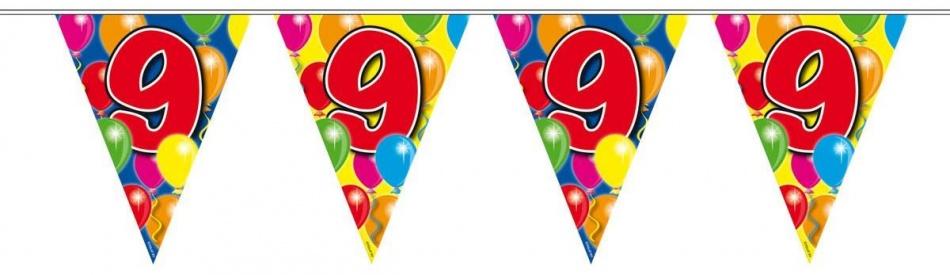Amigo Vlaggenlijn ballonnen: 9 jaar 10 meter