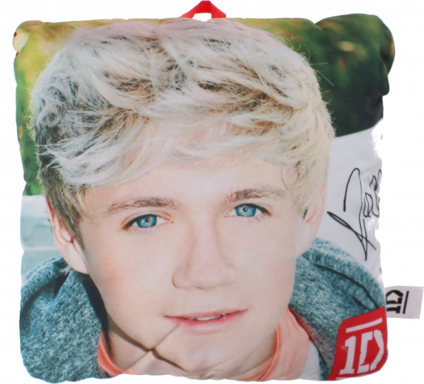 One Direction kussen Niall 25 x 25 cm