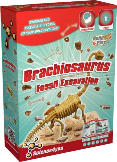 Science 4 You Brachiosaurus palaeontologie experimenteerset