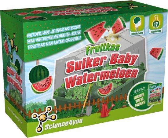 Science 4 You fruitkas watermeloen experimenteerset