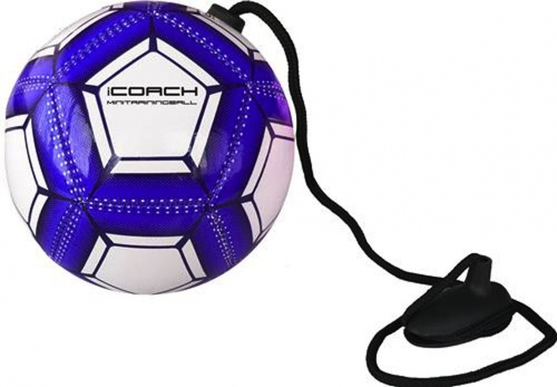 Sportec iCoach mini trainingsbal 2.0 blauw